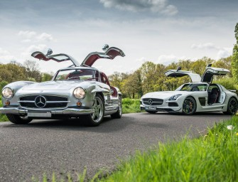 Photo of the Day: Gullwing'd